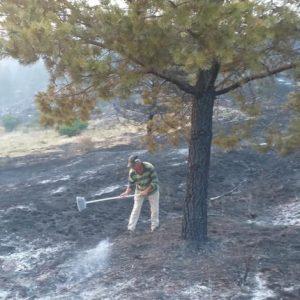 11-годишно момче е причинил пожара край Девин
