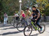 Без автомобили днес в Димитровград?