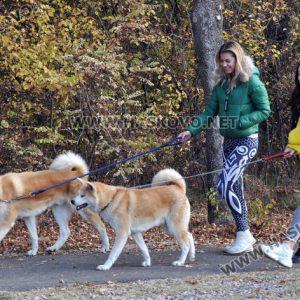 Мнозина излязоха на разходка в паркове и градинки в почивния ден