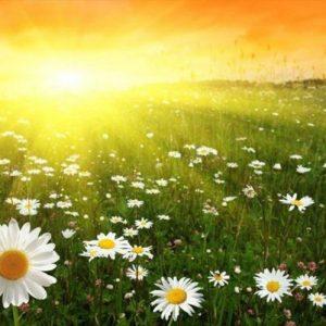Слънчев и топъл 12 септември