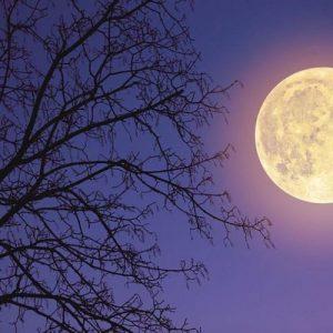 Супер Луна ще огрее небето след седмица